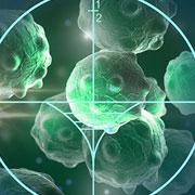 החיישן החכם שיאפשר למנתחים לזהות ולהסיר את כל תאי הגידול הסרטני
