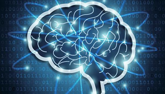 תכנית לימודים חד-חוגית בפיזיקה עם חטיבה במדעי המוח